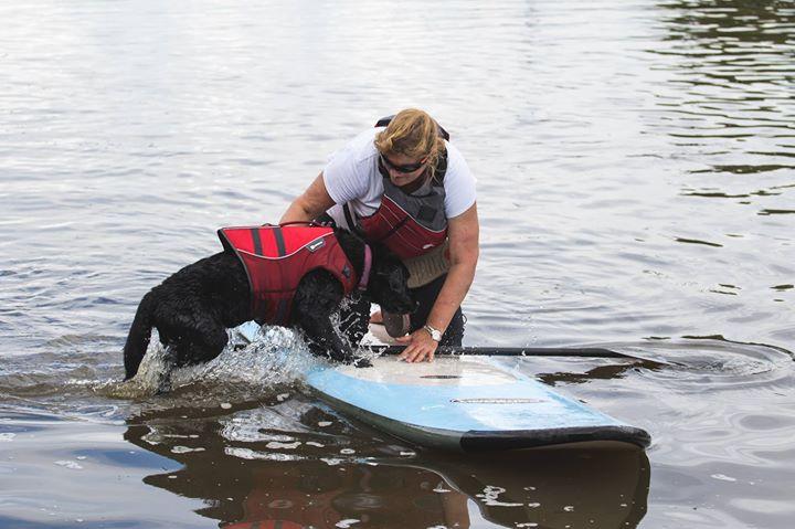 Doggy Paddle Boarding